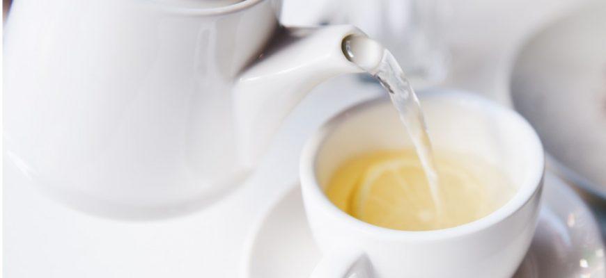הידעת? שתיית תה – בעיקר ירוק – מונעת הסתיידות עורקים